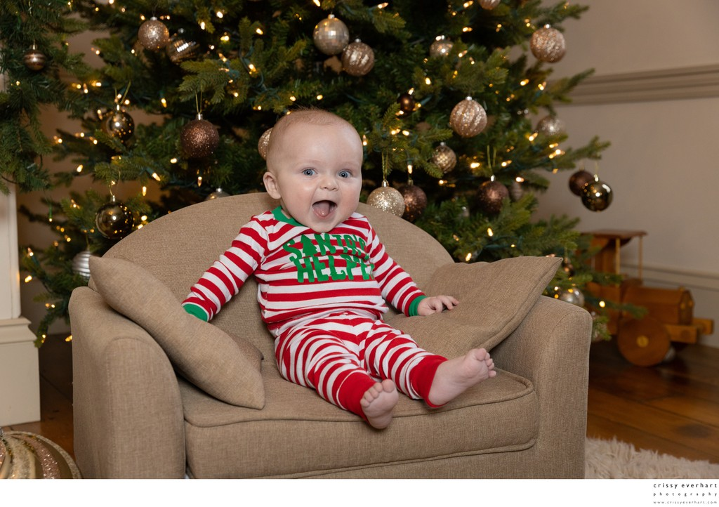 Holiday Portraits in Chester County