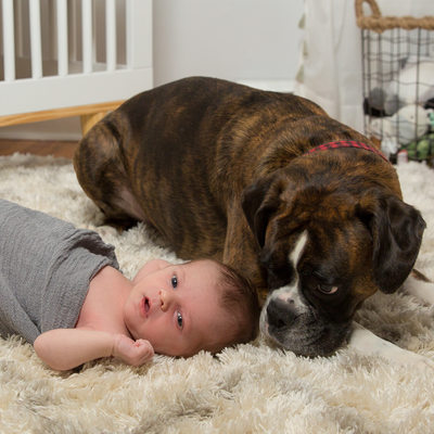 Pictures of Newborn Baby with Family Dog