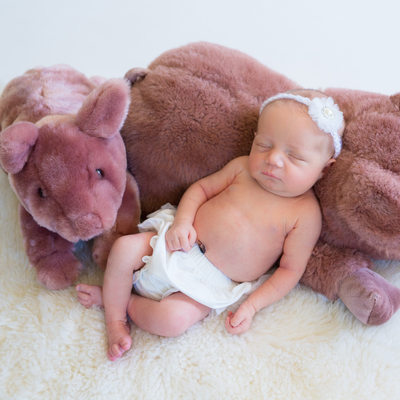 Paoli Newborn Photographer - Girl with Stuffed Animals