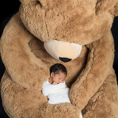 Newborn Photos- Boy Asleep in Oversized Teddy Bear