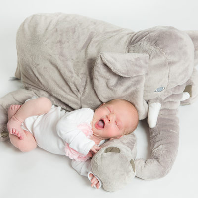 Malvern Baby Photos - Girl Yawns on Stuffed Elephant