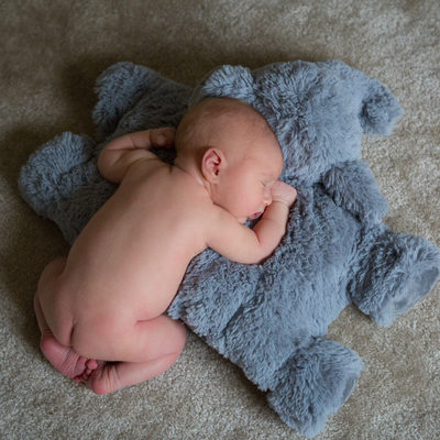 In-home Lifestyle Newborn Session