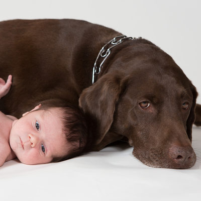 Newborn with Pet Photographer - Baby Boy with Dog