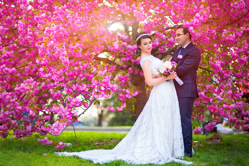 Washington DC Cherry Blossoms Wedding Photos