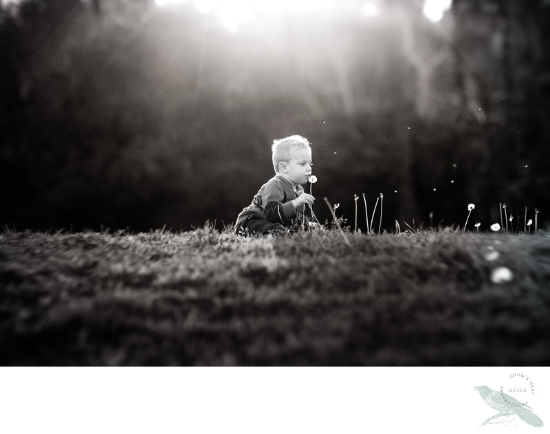 Yorba Linda Family Photographer Open Field