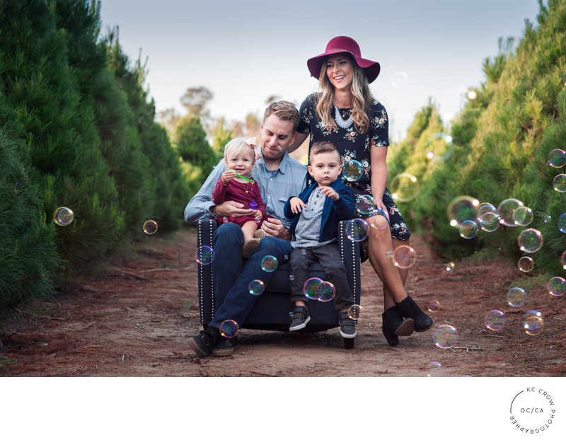 Tree Farm Holiday Card Family Photos Orange County