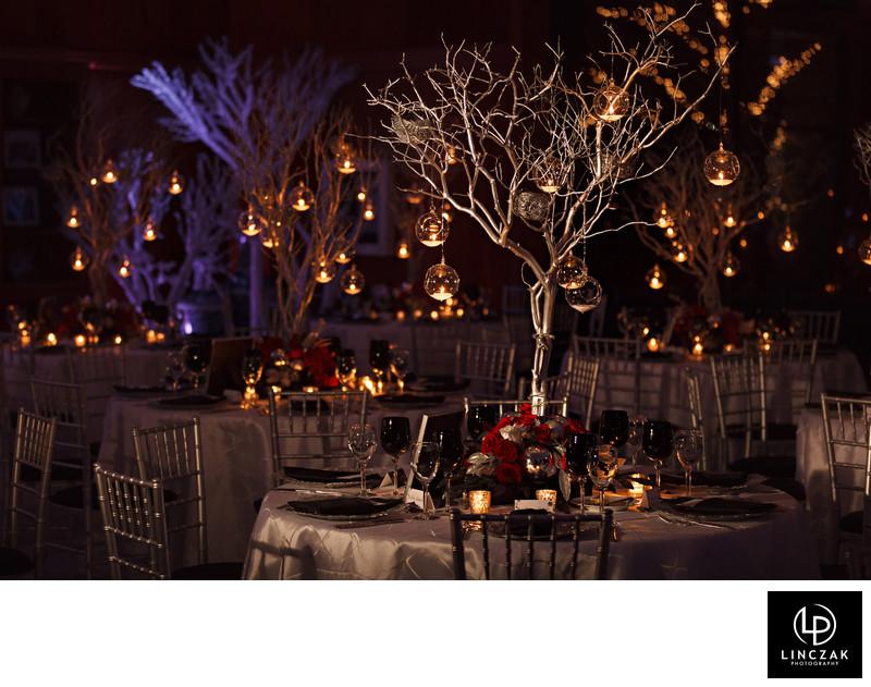 botanical gardens wedding reception Cleveland Wedding