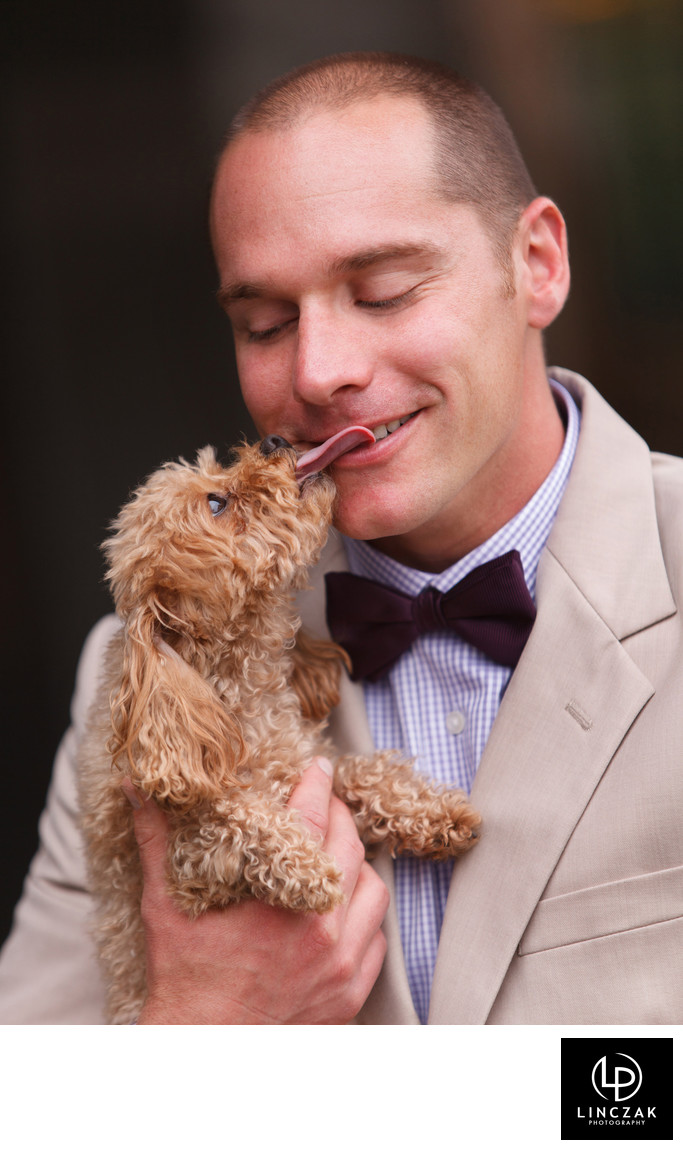dog and groom wedding photo