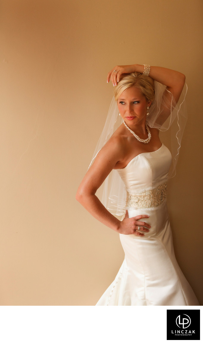 bridal portrait in cleveland
