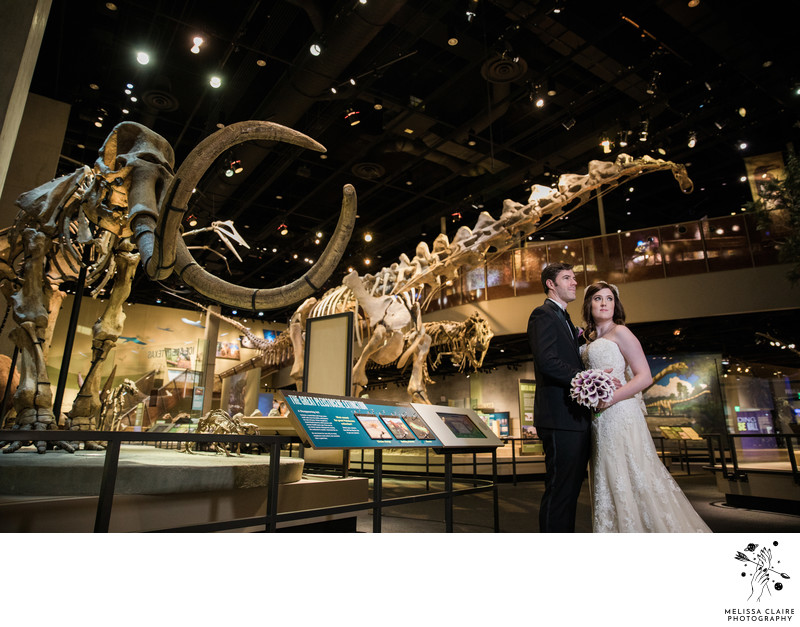 Perot Museum Wedding