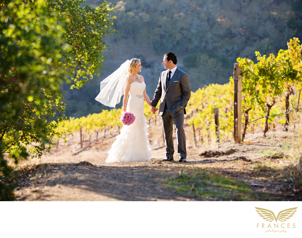 Destination Wedding Photographer Vineyard Couple Photo