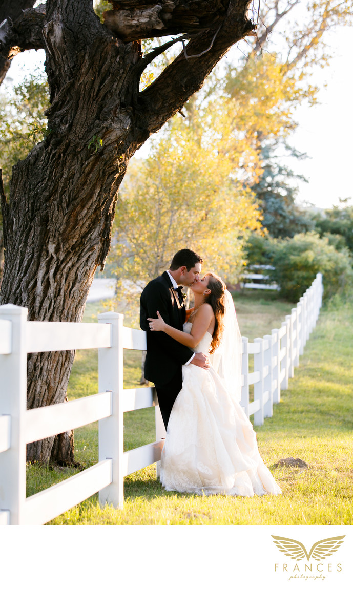 Crooked Willow Farms Colorado wedding photos