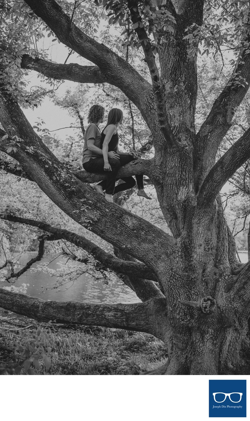 Climbing Trees During An Asheville Engagement Session