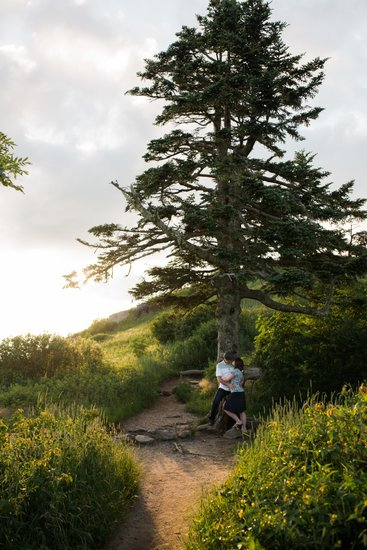 Kiss Under the Tree at Black Balsam Knob