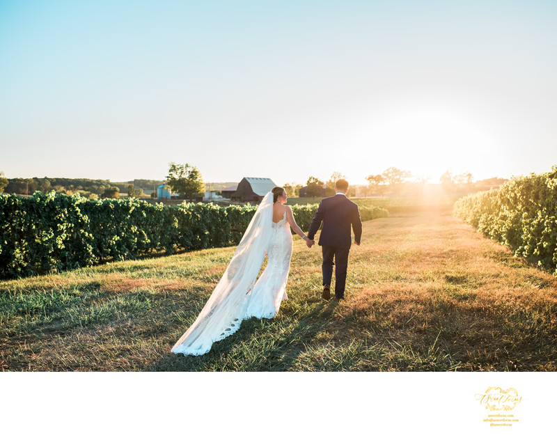 vineyard sunset wedding bride groom ste genevieve mo