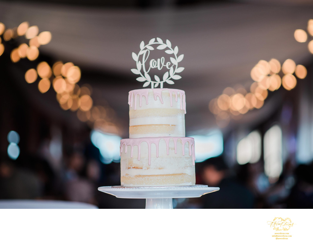 epic cake wedding photography st louis downtown