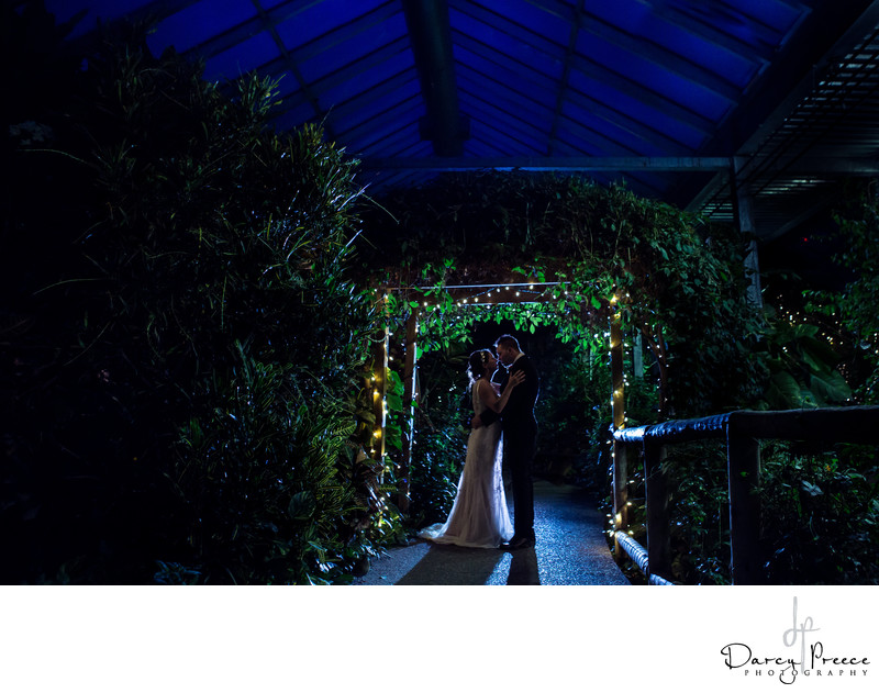 Cambridge Butterfly Conservatory Wedding Photographer