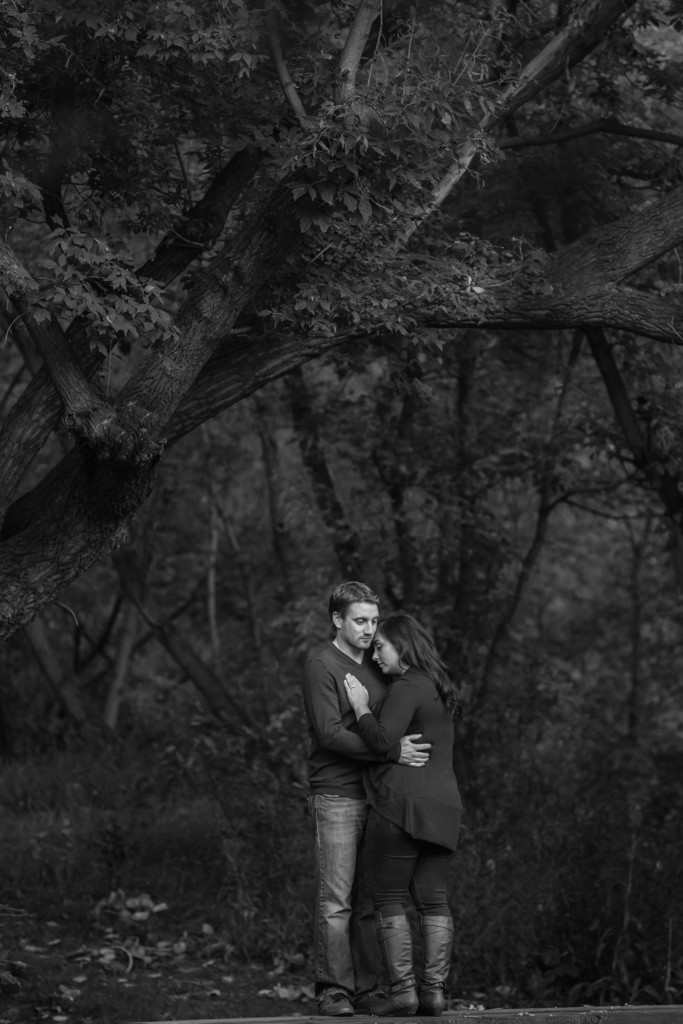 Best Engagement Portraits Edmonton