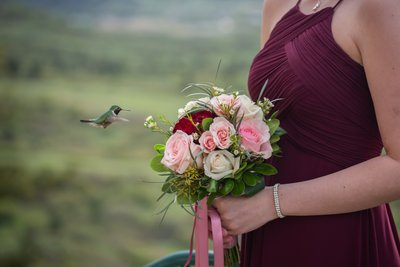 Cherokee Ranch Castle Hummingbird Bridesmaids Portrait