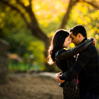 Fall Engagement Pictures Central Park