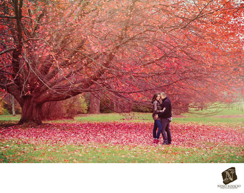 Romantic Autumn at New Jersey Botanical Garden