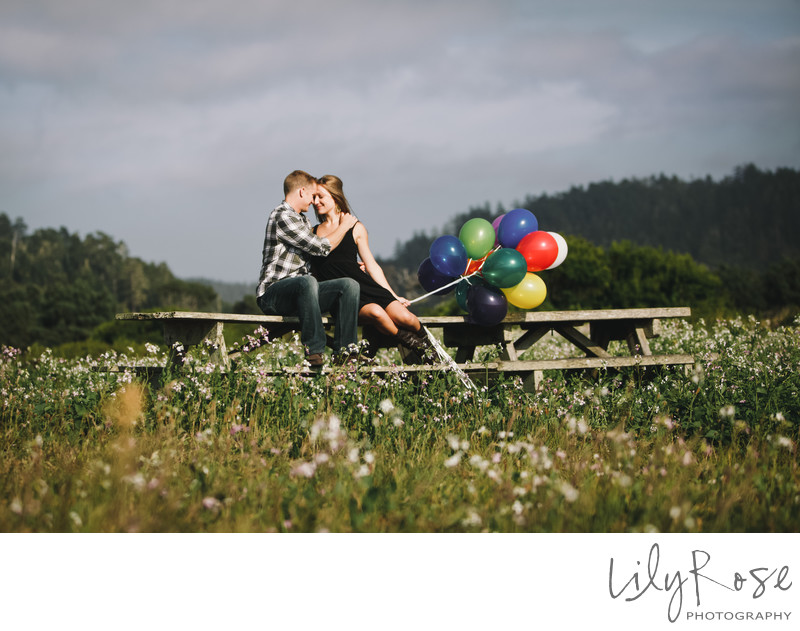 Mendocino Engagement and Wedding Photographer