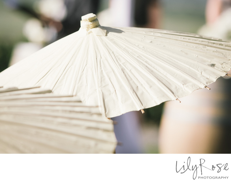 Umbrella Sonoma Wedding Photographer