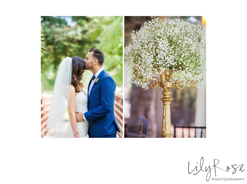 Bride and Groom Romantic Portraits Napa