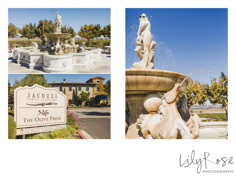 Sonoma Wedding Photographer Jacuzzi Family Winery