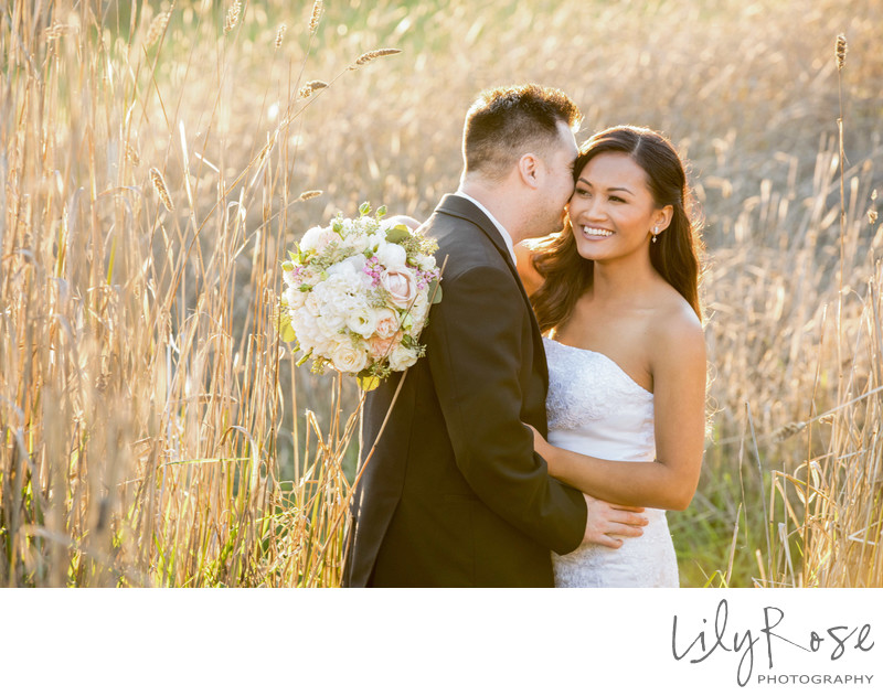 Sonoma Wedding Photographer field