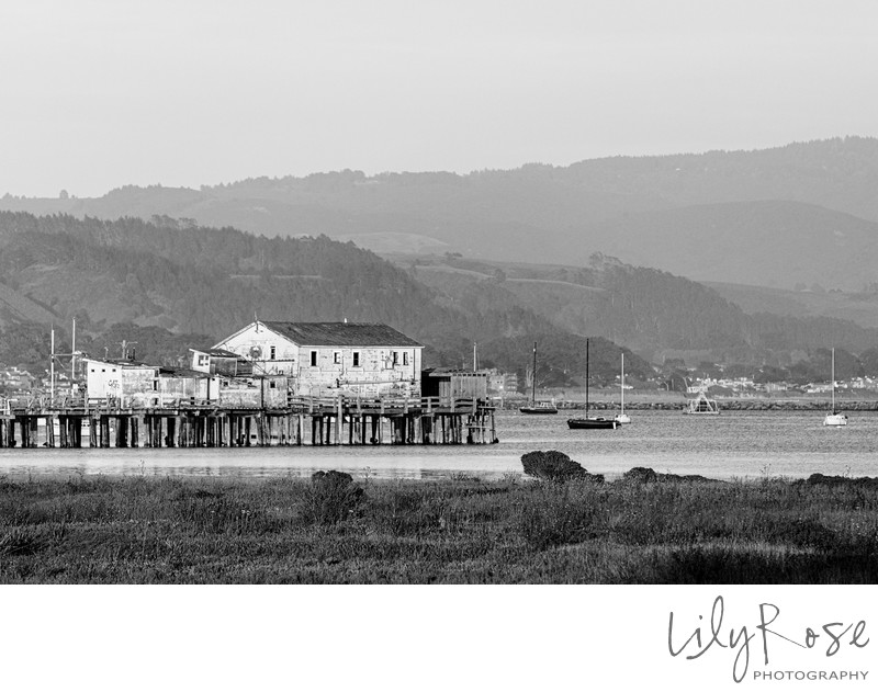 Half Moon Bay Wedding Photography Pier
