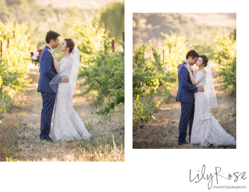 Wedding Couple in the Cline Cellars Vineyard