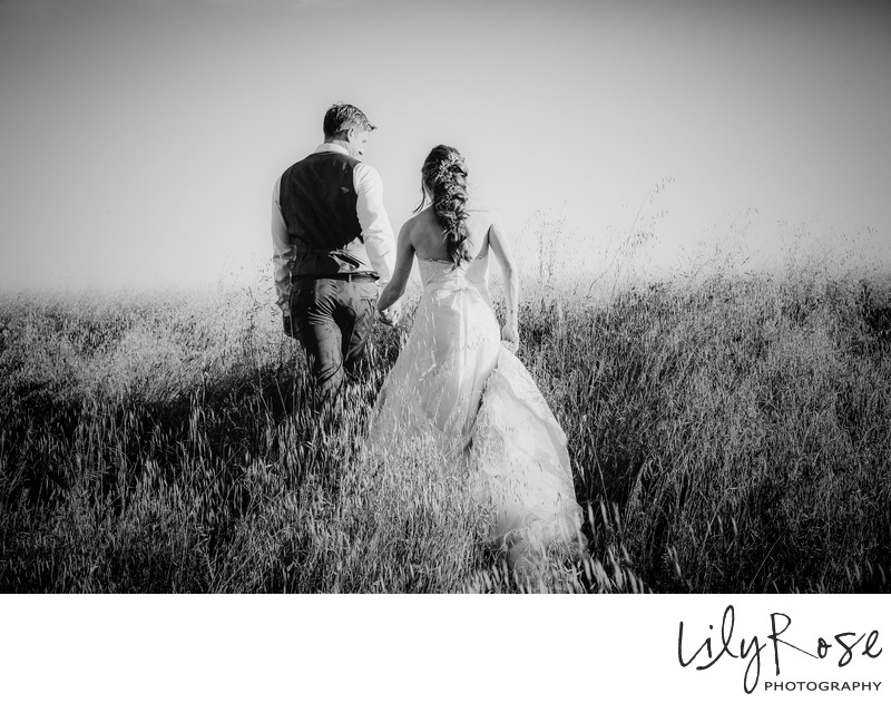 Wedding Photos at Meritage Resort and Spa in Napa