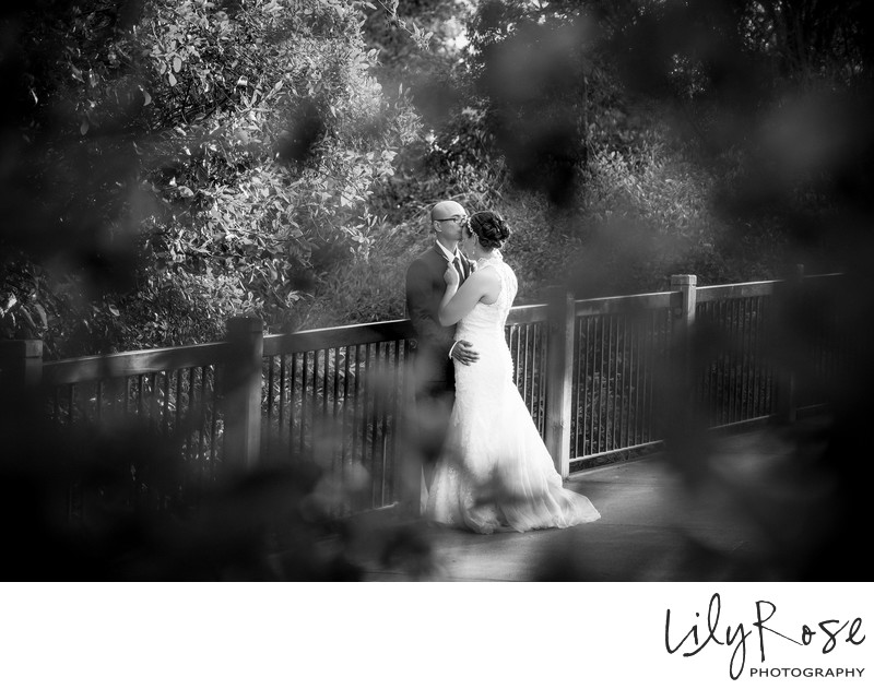 Best Wedding Photographers Santa Rosa