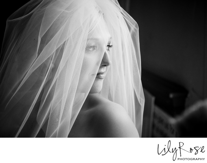 Amazing Bridal Portrait