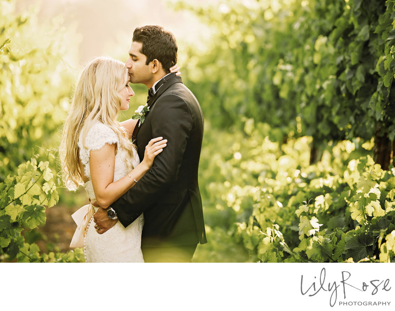 Top Wedding Photographers in Geyserville