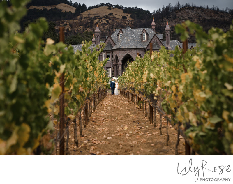 Ledson Winery Romantic Scenic Photography