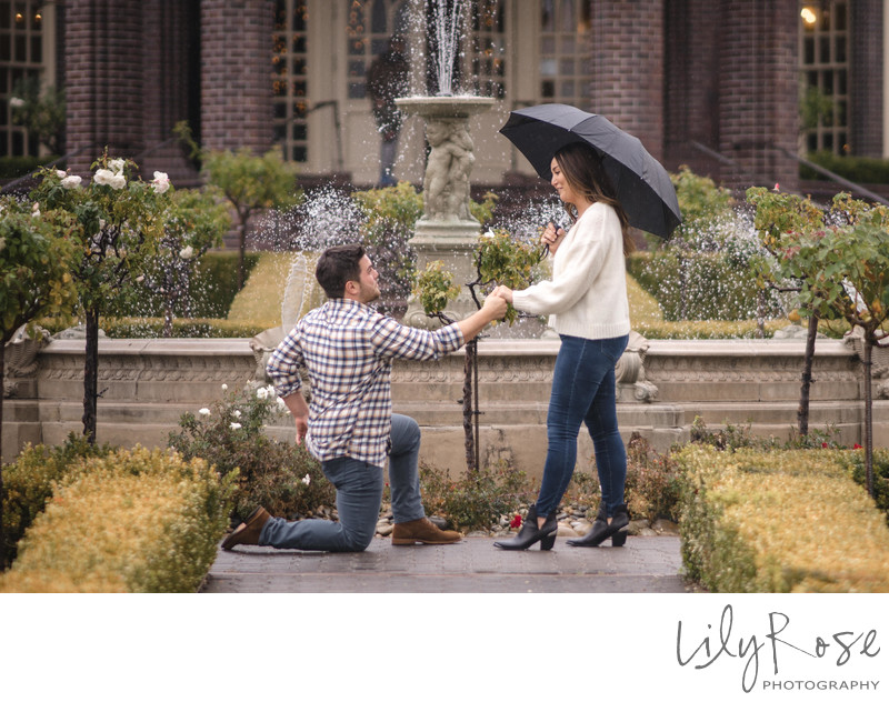 The Wedding Proposal at Ledson Winery
