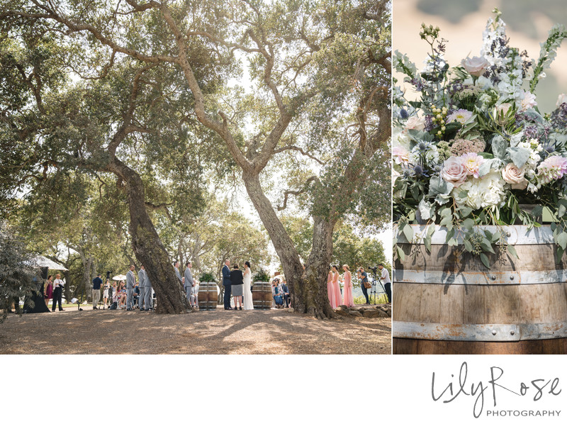 Mazel Tov Kunde Winery Wedding Sonoma Photographer