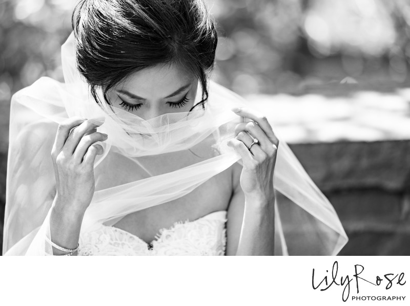 Bride Veil Kunde Winery Wedding Sonoma Photography