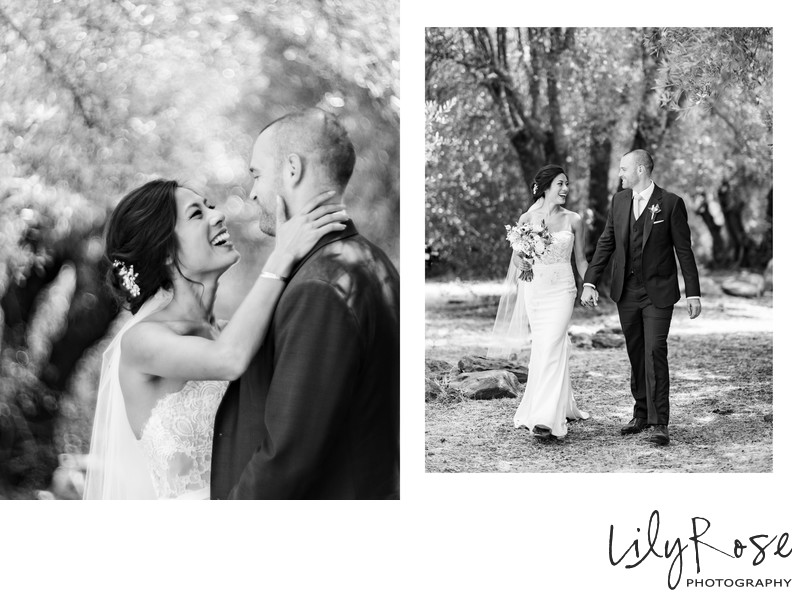 Sonoma Photographer Wedding Kunde Winery Olive Hill