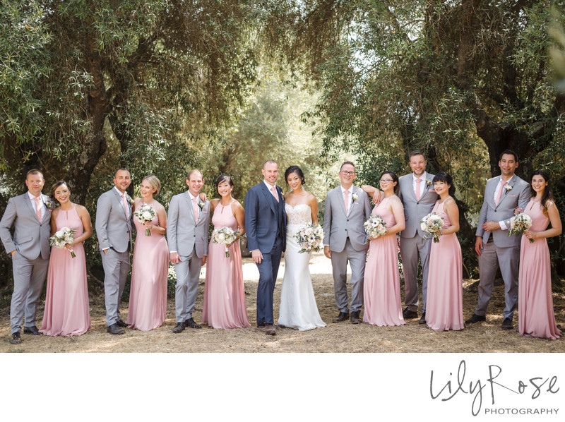 Sonoma Photographers Wedding Kunde Winery Wedding Party