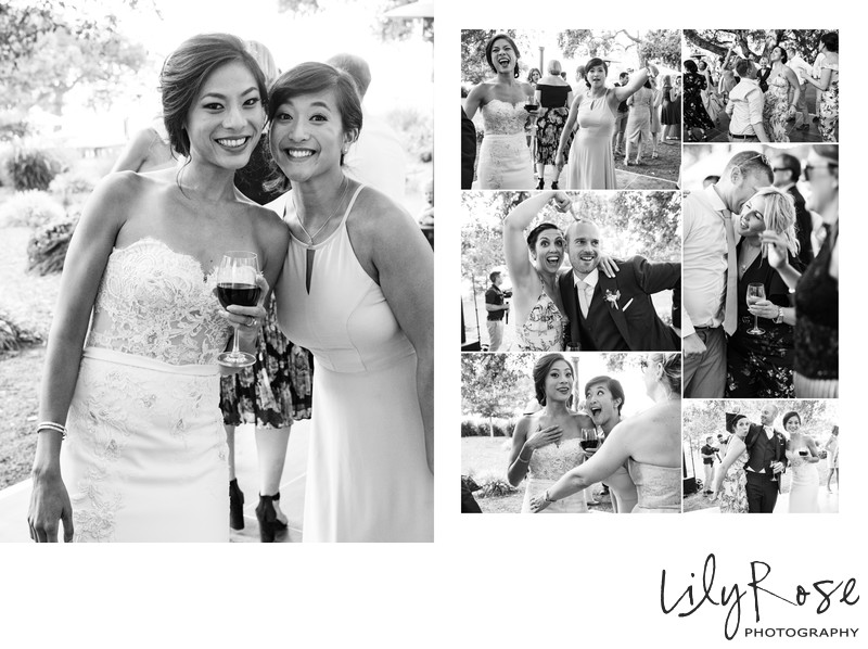 Guests Sonoma Photography Wedding Kunde Family Winery