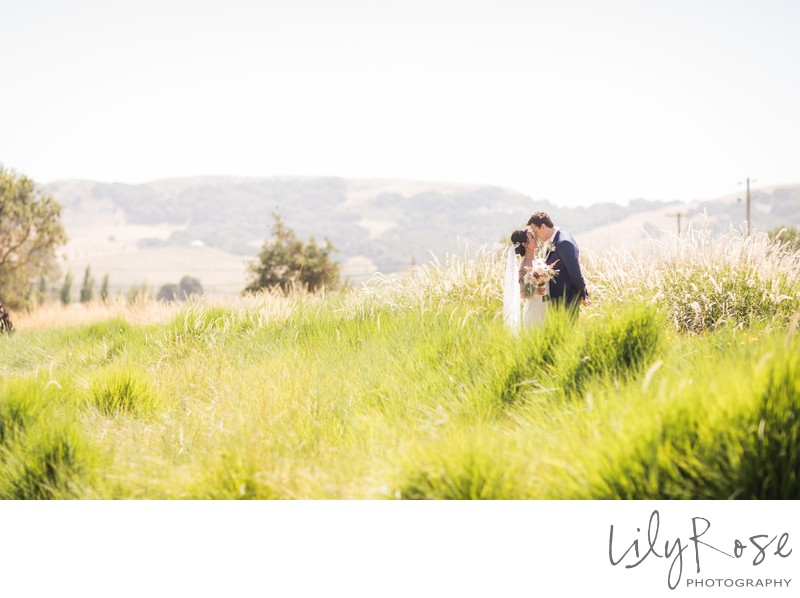 Cornerstone Sonoma Wedding Photography Romantic Image