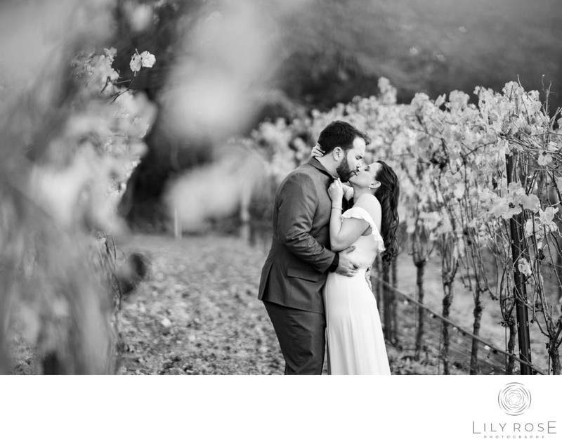 Bride and Groom in Vineyard at Micro Wedding Sonoma