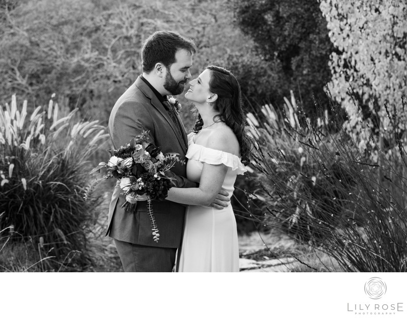 Sonoma Intimate and Micro Wedding Photography