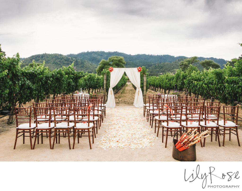 Brix Napa Micro Wedding Ceremony
