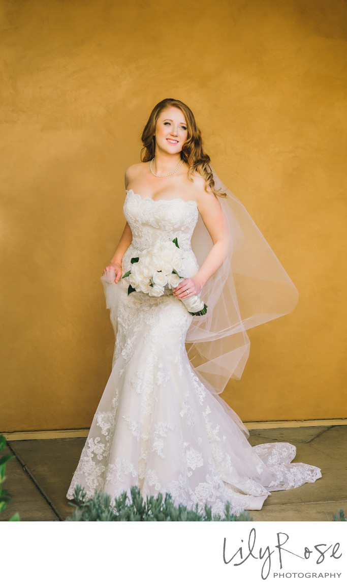 Bridal Portrait Best Wedding Venue in Napa Meritage