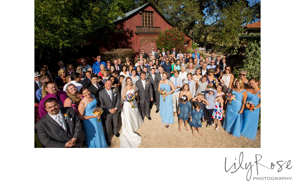 Best Sonoma Wedding Photographer Kenwood