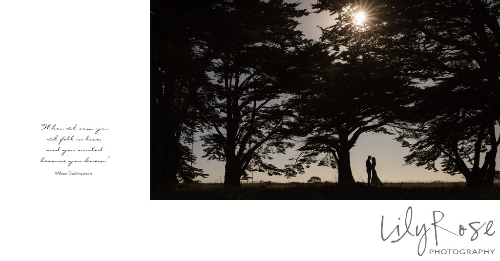 Best Engagement and Wedding Photographers in Sonoma